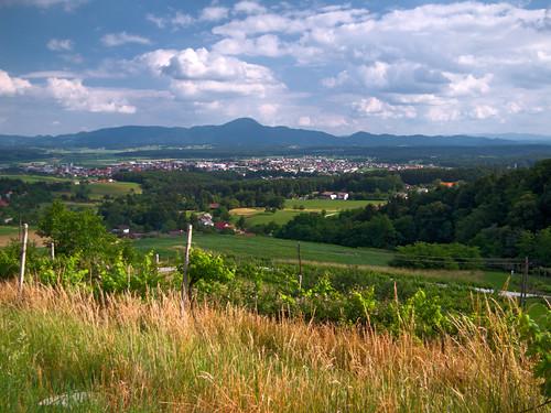 Slovenska Bistrica