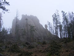 Needles in Custer State Park