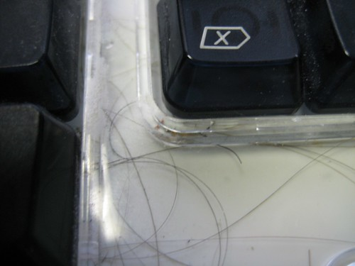 Hair In Old Apple Keyboard