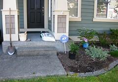 Before... (StubbyFingers) Tags: washington bucket euonymus hydrangea shovel compost snoqualmie snoqualmieridge sarcacoca