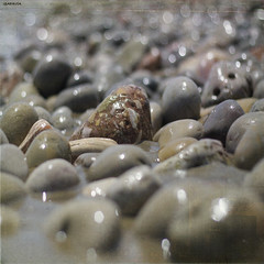 Mediterranean stones (Isabel Pava) Tags: summer beach nature grey playa explore textures calas pescola lesbrumes