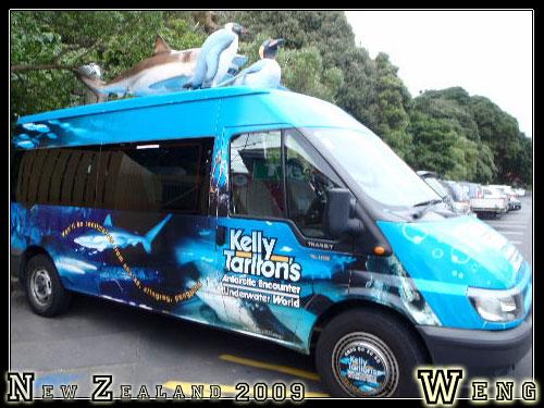 Auckland, Kelly Tarlton