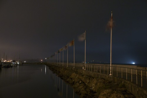 Flags Along the Walkway