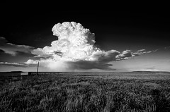 Cumulonimbus (David Kingham) Tags: sky blackandwhite storm clouds nikon colorado fortcollins prarie cumulonimbus pawnee d90 pawneenationalgrasslands coloradothunderstorms therebeastormabrewin