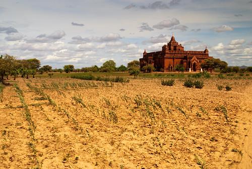 Bagan 15