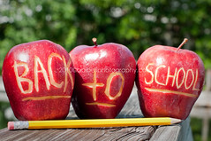 Back to School Kids! (Orlando Photo Chic) Tags: school red green apple yellow pencil writing carved bokeh apples backtoschool aug24th weeklyphotochallenge carvedapples applesforteachers