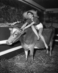 Milky Way (dairy) exhibition, Sydney Town Hall, 12 August 1955 / Ern McQuillan