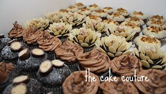 38. Mini Cupcake Assortment (The Cake Couture (is currently not taking any orde) Tags: party chocolate almond mini cupcake carrot doha qatar                           thecakecouture