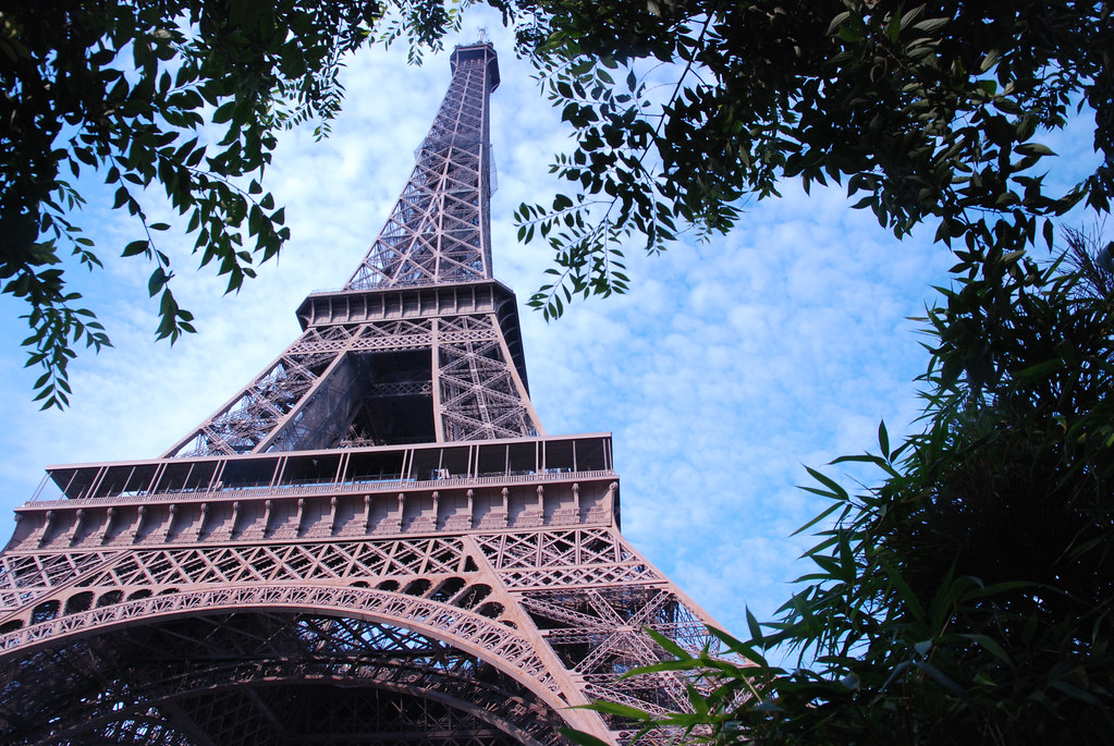 Eiffel Tower Y Trees