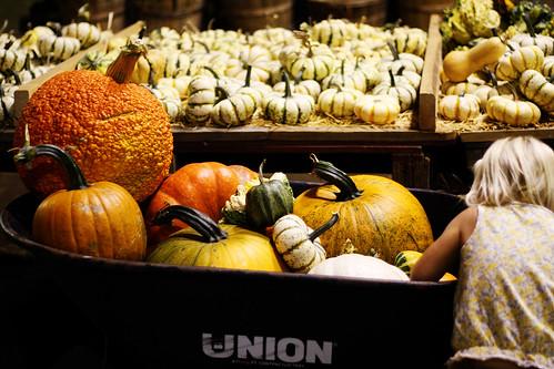barrel o pumpkins