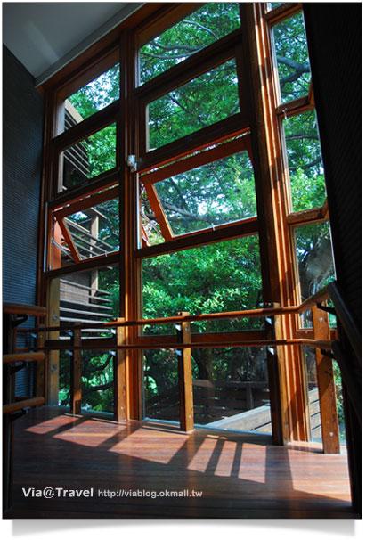 【北投一日遊】北投圖書館~綠色概念美學的圖書館15