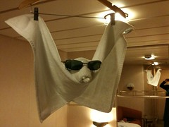 Room service towel art