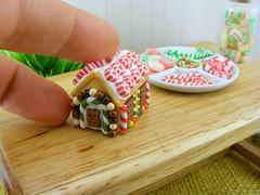 Mini, Mini House
