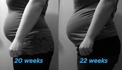 20-22 Week Comparison