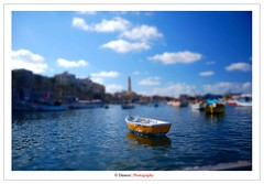 A Perfect Sailing Weather (Damon | Photography) Tags: africa trip travel blue sea 2 summer fish alex alexandria weather photoshop miniature fishing nikon perfect sailing creative egypt shift suit filter shore 09 sail 1855mm nikkor polarizer tilt seashore 2009 circular 52 hoya clp d40 a nikond40
