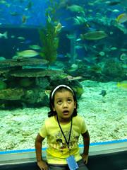 Oceanpark Field Trip