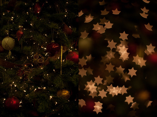 Bokeh Masters Kit Test: Christmas tree before and after