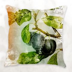 Botanic fruits cushions (fabienbarral) Tags: house home hotel design graphic decoration exchange laurent dubois fabien dandb fabricprint barral bydandb