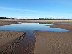 Beach seepage