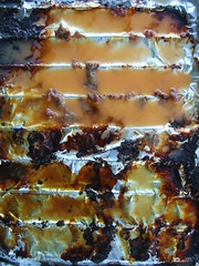FAT (uberschnapp) Tags: summer food art fat bbq grill grease congealed solidified postsausagism