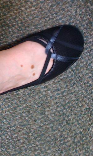 365 - slipper