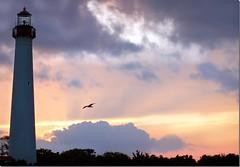 Cape May - A Summer Finale ( Colpo di fulmine ) Tags: sunset sea lighthouse nikon anniversary simplicity capemay cuore amore seasaw felicit ps4 cherferroggiarodubois