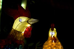 Light Chickens (JFrosty) Tags: light canada chicken night lanterne montréal quebec montreal chinese québec lumiere lantern chinois tiki nuit poulet chinoise canonef50mmf18ii canoneos30d