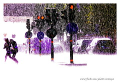 Poetry of Rain (Araleya) Tags: life road street summer people urban white water rain weather backlight season trafficlight europe traffic artistic sweden stockholm citylife documentary silhouettes atmosphere running poetic moment splash heavy rainfall raindrop magicmoment hikey streetshot likepainting heavyrain araleya rainsplash augustrain postcross poeticmoment scandinevia