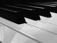 Black and White Keys (flosspot) Tags: music white black macro canon keys notes percussion piano ivory instrument ebony instrumental g10 flickrchallengegroup thechallengegame canong10challenge flickrunitedaward lynettecoates agcgsweepchallengewinner agcgsweepwinner