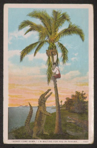 postcards 110109 001