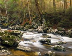 wahconah 10 (CM Murray) Tags: longexposure autumn nature water stream raw pentax berkshires k7 ndfilter da1855 wahconahfalls pentaxk7