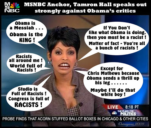 tamron hall sees racism by outrageous2010 tamron hall tamron hall
