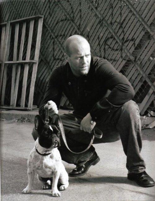 jason statham with dog