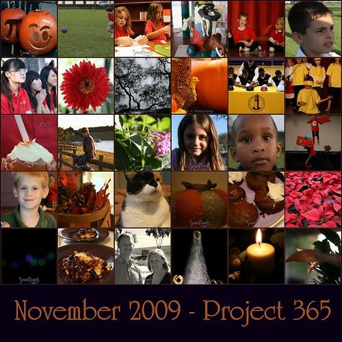 November Project 365 Mosaic