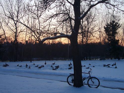 0912-snowy-riding-4