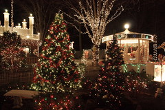 Christmas lights! (lehcar1477) Tags: santa christmas xmas decorations holiday tree castle zoo lights santas time massachusetts noel christmaslights lit stoneham zoolights stonezoo santascastle