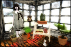 Hibou, lapin et fashion victim (Ys Ah) Tags: secondlife kao freebies maitreya fashionsladdict lfauna
