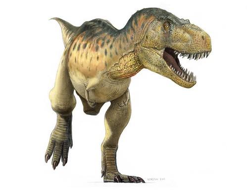 tyrannosaurus color