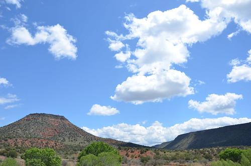 Arizona 2011 504