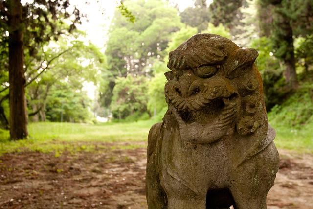 #57 Giant Cryptomeria of Onsen Shrine