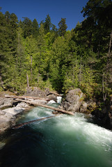 May_23_2011 (Tim J Forbes) Tags: canada nikon bc vancouverisland tofino northamerica ucluelet