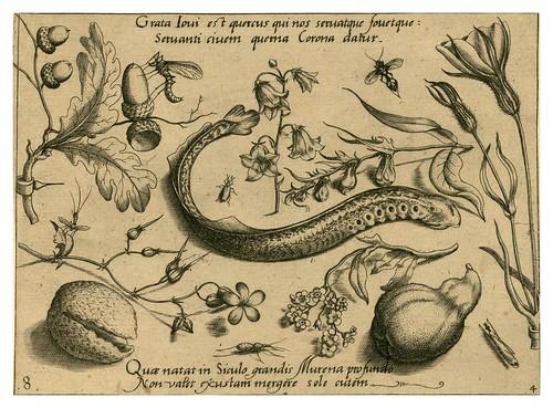 015-Archetypa studiaque patris 1592