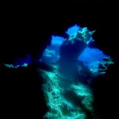 #353 underwater cave (Nemo's great uncle) Tags: underwater cave kerama 慶良間 okinawaprefecture 沖縄県 洞窟 水中 慶良間列島