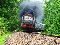 Holy smoke....... (Ujjawal) Tags: train diesel indian smoke foliage jungle express curve et railways forests rebuilt teak jabalpur somnath irfca itarsi wdm3a greenrey bagratawa
