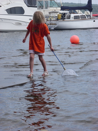 Elizabeth scooping for creatures in Lake Champlain