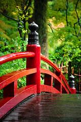 bridge   橋 (Swiftblue) Tags: bridge red japan japanesegarden asia hiroshima 日本 庭 nihon hiroshimaken 橋 広島 hiroshimaprefecture 赤 アジア shukkeien 広島県 縮景園