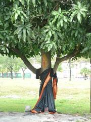 I Saw A Tree Dressed In Saree. (ighosts) Tags: tree nature malaysia saree diety treespirtis