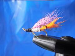 Eva Joly (Dr hoddsson) Tags: nature iceland fishing flyfishing trout fishingfly articchar víðidalsá heimasæta
