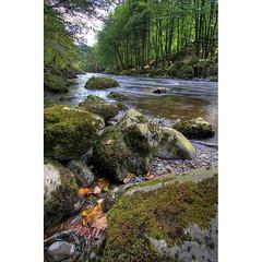 Afon Llugwy (Stu Worrall Photography) Tags: trees nature water wales river rocks stu north welsh afon worrall llugwy
