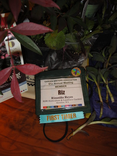 Riz Badge
